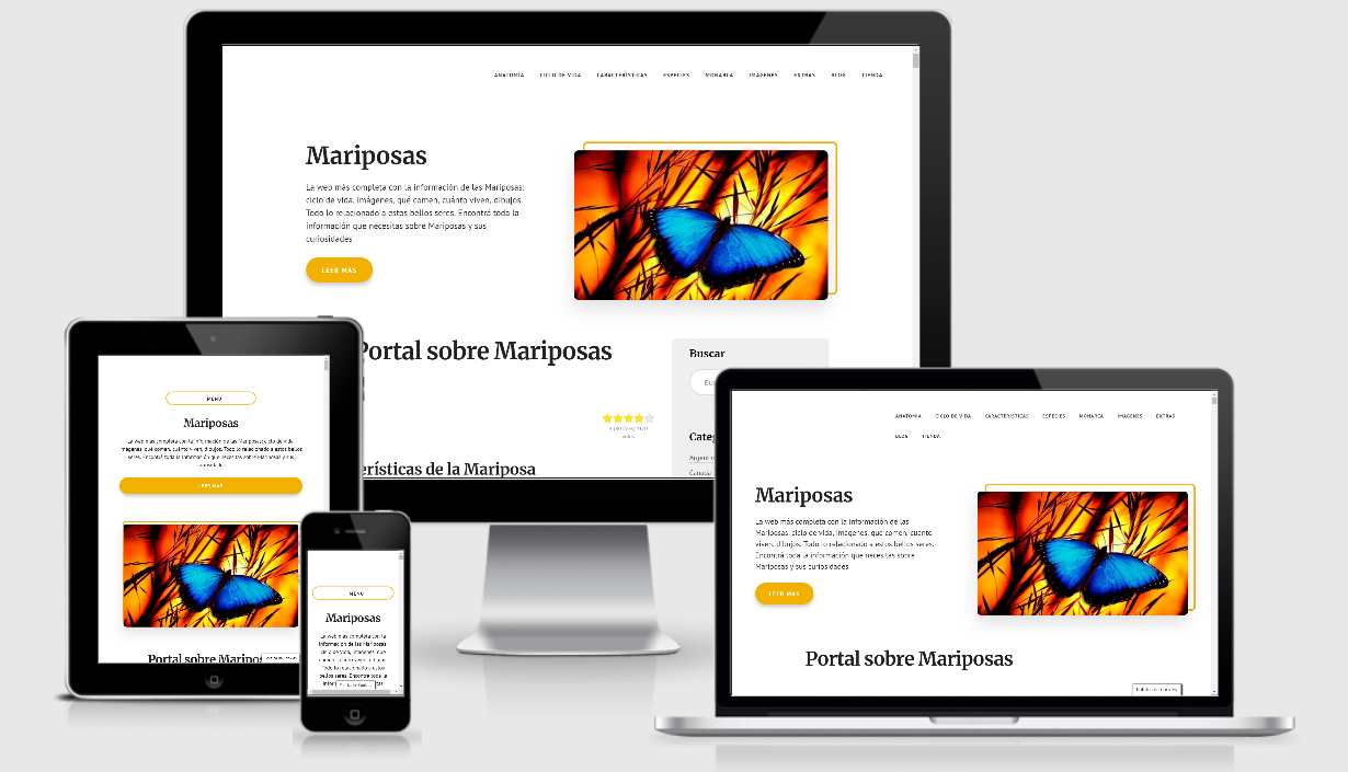 https://efimy.com/project/cliente-blog-mariposas/
